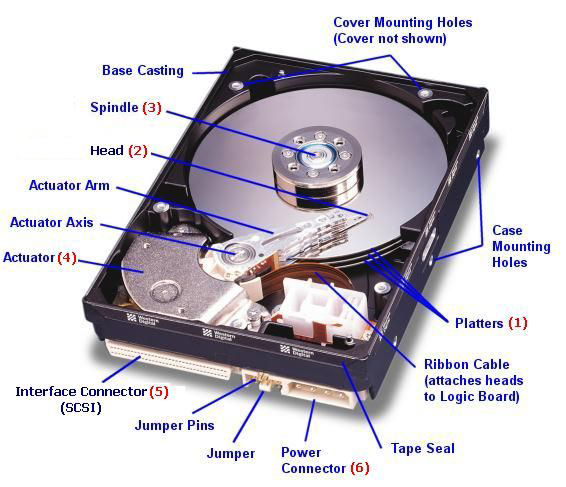 Disk Drive Terms and Concepts